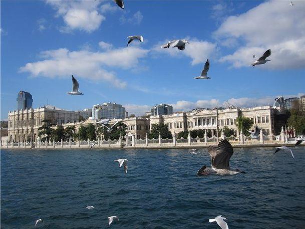 В один из хороших дней отправляйтесь на пароме посмотреть на чудесный город с воды!
